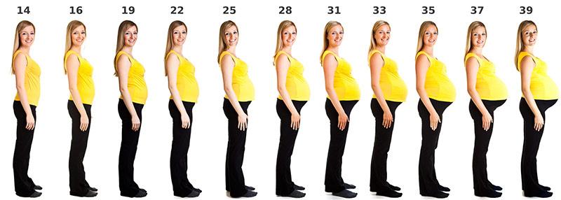 schwangerschaft nach periode