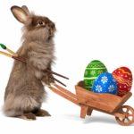 Ostergeschenke Tipps für Kinder – Was schenkt man zu Ostern?