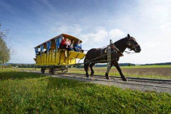 Mühlviertler Pferdeeisenbahn | Foto: Oberösterreich-Tourismus (Roebl)