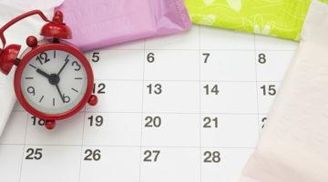 Eisprung-Rechner online: Fruchtbare Tage berechnen – Wann kann ich schwanger werden?