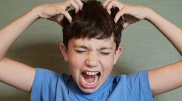 Oh Schreck, mein Kind hat Läuse!