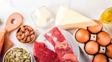 Eiweiß – Proteine wichtige Baustein unserer Zellen